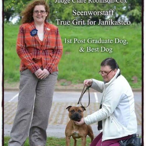The Birmingham & District Gundog & Terrier Club - 20th April 2014 - Clare Robinson-Cox