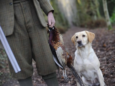 Outdoor Clothing and Footwear, Guns Ammunition and Accessories, Livestock Supplies and Pest Control