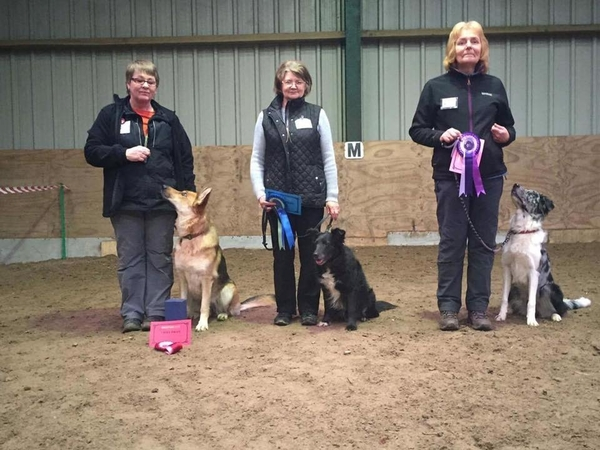Reddyford Open Show Members wins