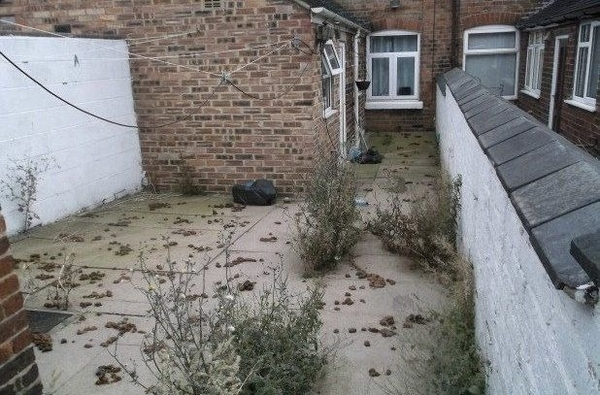 Woman fined £860 for failing to clean up dog mess in her backgarden