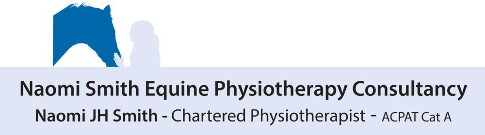 Naomi J H Smith chartered physiotherapist equine rider horse