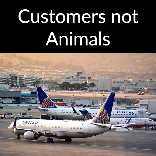 What United Airlines did right in Chicago!