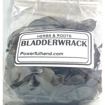 Bladderwrack Herb