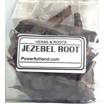 Jezebel Root