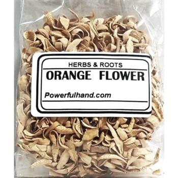 Orange Flowers Herb