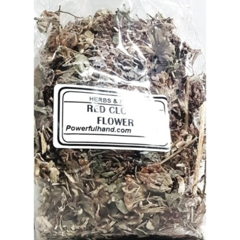 Red Clover Flowers Herb
