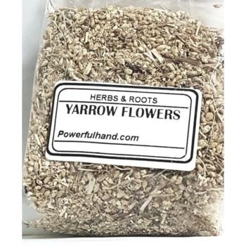 Yarrow Flower Herb