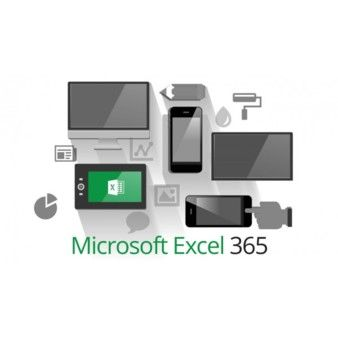 Microsoft Excel 2013/ Excel 365