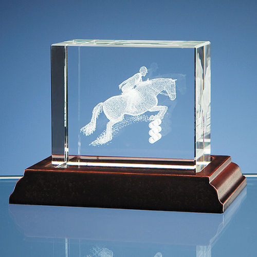3D Showjumper in Optical Crystal Block