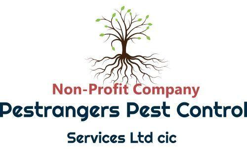 Pestrangers Pest and Bird Control Services | Pest Control Services Norfolk