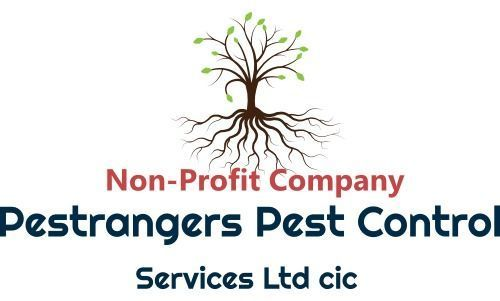Pestrangers Pest and Bird Control Services | Pest and Woodworm Control Services Norfolk