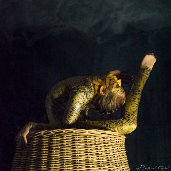 Wicker Snake Basket