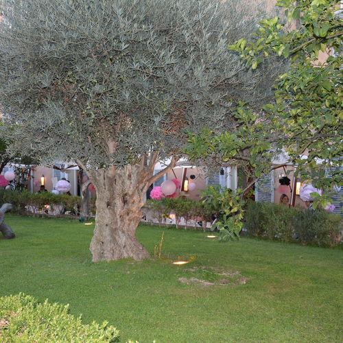 Private Gardens in Central Rome