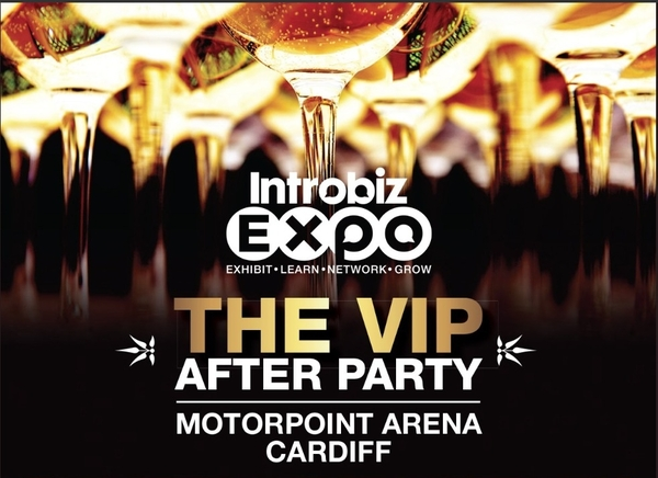 Back to Introbiz V.I.P. Party!