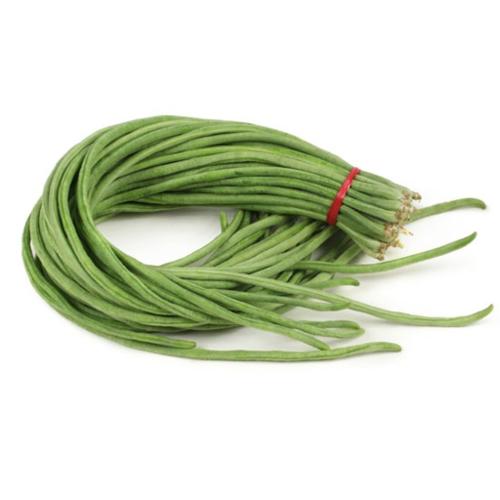 Yard Long Bean/Snake Bean (ถั่วฝักยาว)