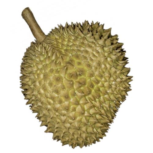 Whole Durian (ทุเรียนลูก)