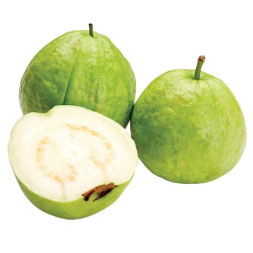 Guava (ฝรั่ง)