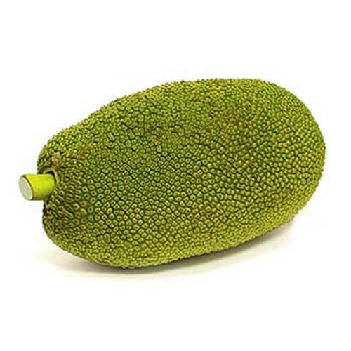 Jackfruit / Young (ขนุนอ่อนชิ้น)