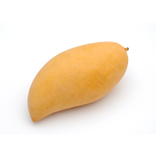 Sweet Yellow Mango (มะม่วงสุก)