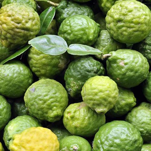 Frozen Kaffir Lime (ลูกมะกรูดแช่แข็ง)