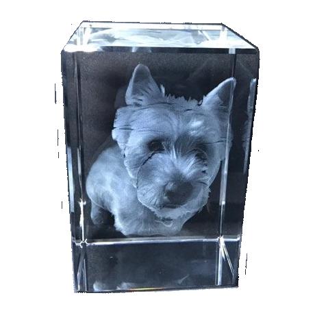 3D Pets