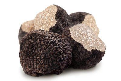 Fresh Truffles UK, Tuber Aestivum Tuber Melanosporum Tuber Uncinatum, Welsh Truffles
