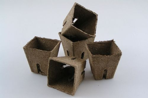 6cm Peat plant pots Jiffy Square