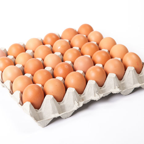 Grade A Eggs Size L 12x30pc/case