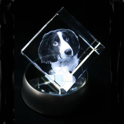2D Pet Cube 50x50x50