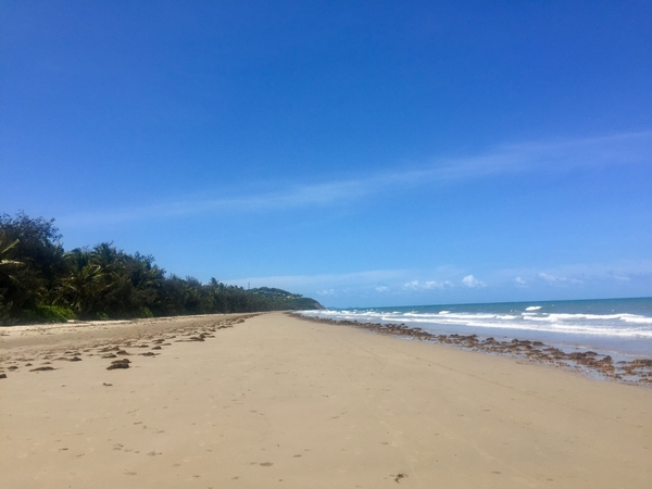Queensland - where the rainforest meets the sea!