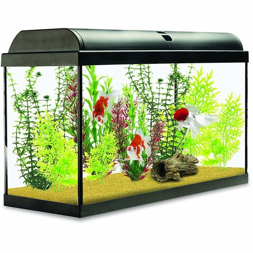Interpet Aquaverse Glass Aquarium Fish Tank Premium Kit- 65 L