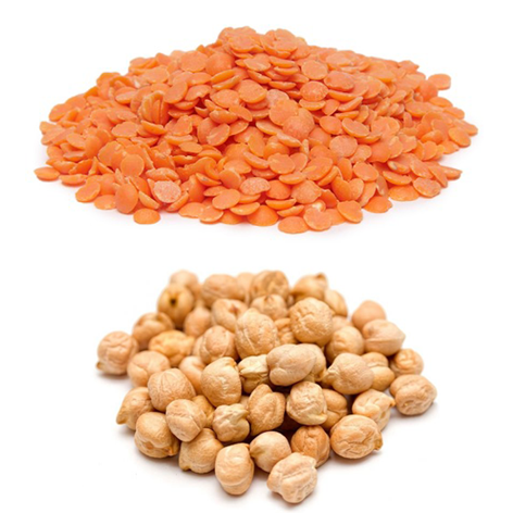 Pulse & Lentils
