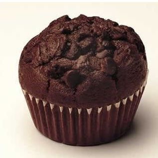 Extra Moist Muffin Mix Chocolate 500g