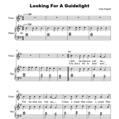 Looking For A Guidelight