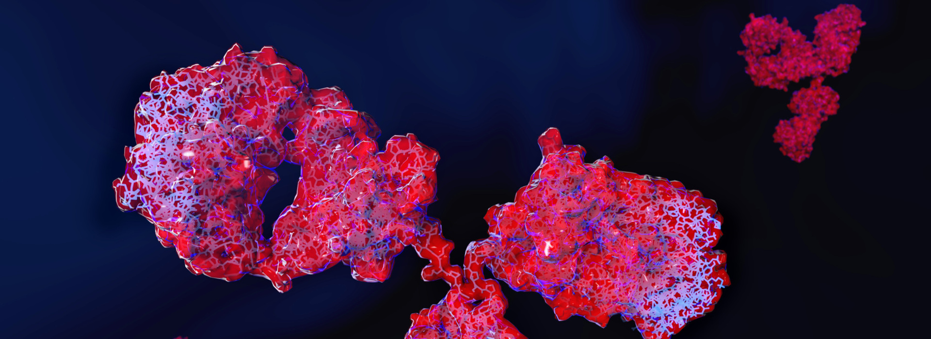 Immuno-Oncology assay development