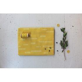 Atelier Brunette Dash Lime Cotton Batiste