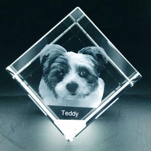 3D Pet Corner Cube 60x60x60