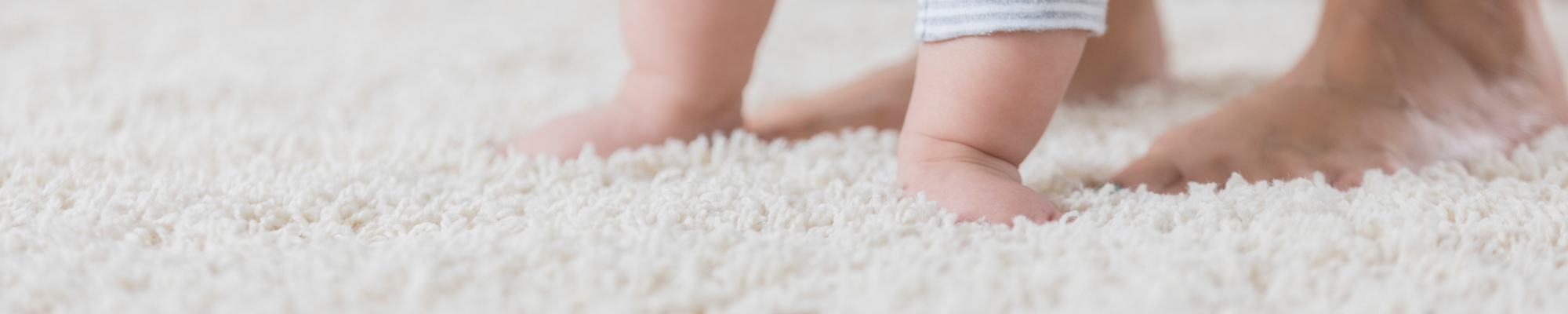 Carpet Cleaning Hereford, Upholstery Cleaning Hereford, Carpet Cleaning Herefordshire