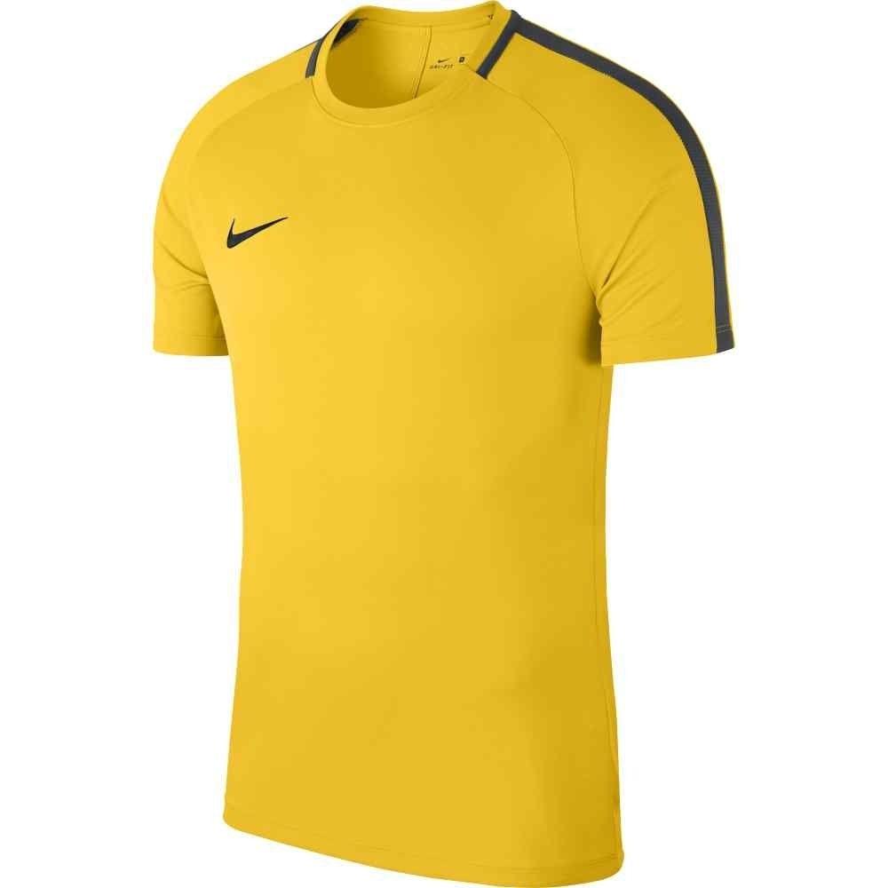 Whickham Fellside Nike Academy 18 Training Shirt
