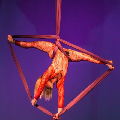 Aerial artists