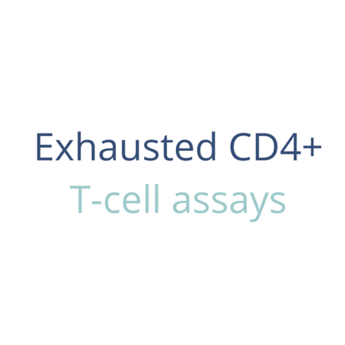 Exhausted CD4+ T-cell assays