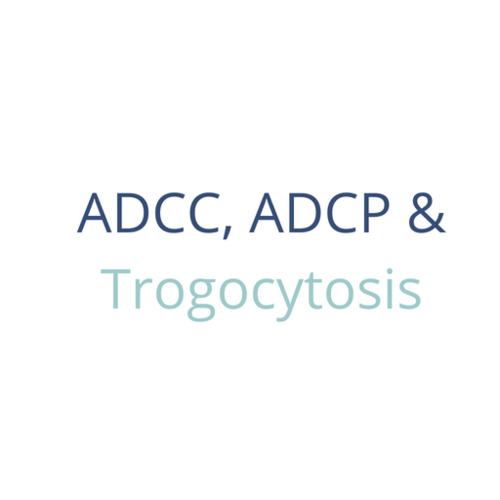 ADCP analysis