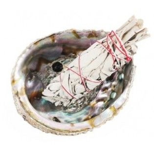 Sage Abalone Shell Kit