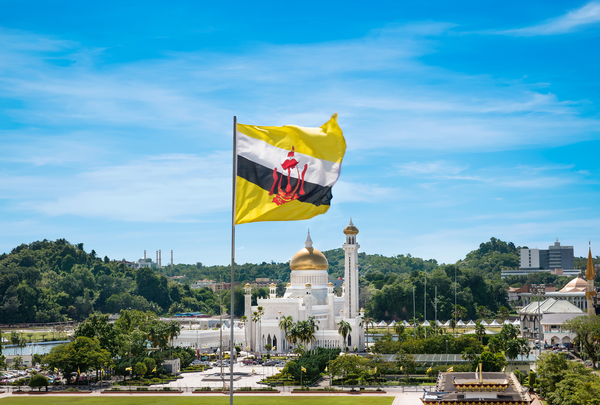 Brunei To Develop Petrochemical Industry With New Plant