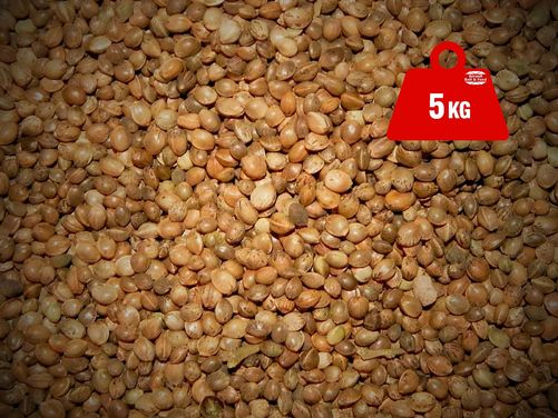 Hemp Seed Dry 5kg