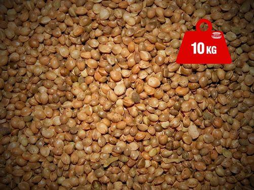 Hemp Seed Dry 10kg