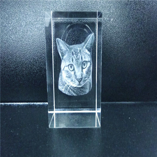 2D Small Rectangle. 80x50x50. For 1 Person Or Pet