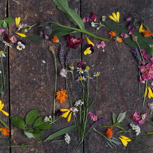 Dorset Flowers Botanical Face oil