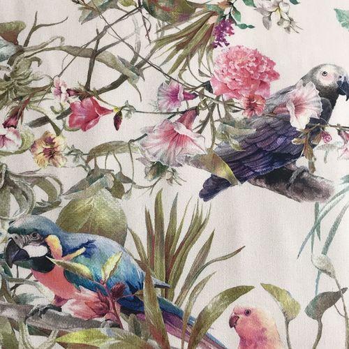 Lady McElroy Parrotdise Chalk Stretch Cotton Sateen Copy
