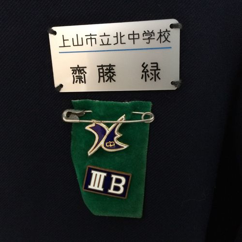 M, junior high school jacket for girls, with badges